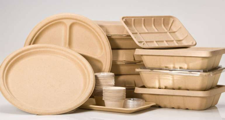 Why is Biodegradable Packaging Important for your Brand